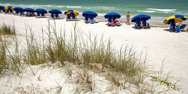 The main beach at Island State Park, a barrier island along the Gulf of Mexico, on Florida's West Coast, in a 2008 file photo. (AP Photo/Craig Litten)