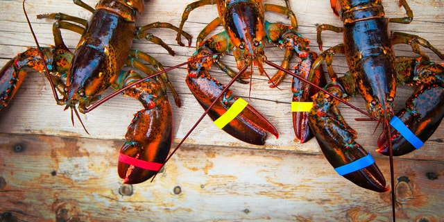 The ongoing coronavirus outbreak is drowning Chinese demand for American lobster, reportedly plunging market prices to record lows.