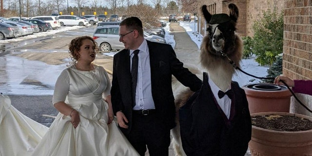 """""""Literally, I called him to tell him I was engaged and his response was, 'Great, I'm calling the llama farm now,'"""" Riva said of her brother's dedication to the prank."""