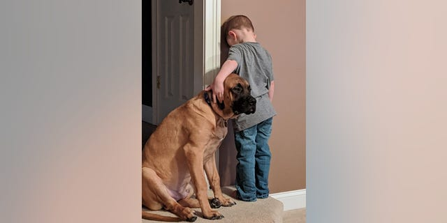 The youngster was soon joined by the family's English Mastiff puppy, Dash.