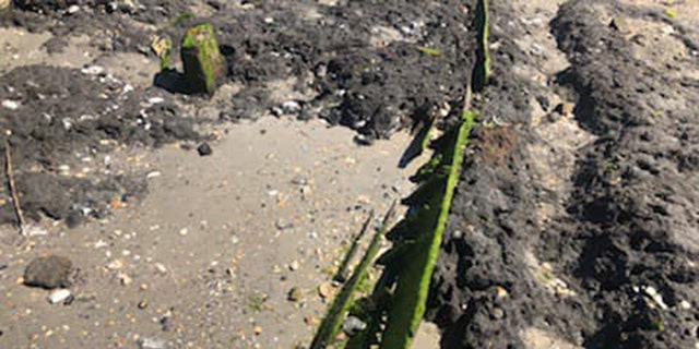 The wrecks were discovered near jetties in Mayport.