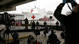 USNS Comfort crew member tests positive for coronavirus: report