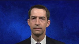 Tom Cotton says WHO leader has 'reputation for corruption': He is in China's pocket