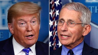 Former WH adviser unloads on 'evil' Fauci, says he repeatedly told Trump to can him