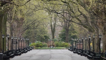 Coronavirus in NYC fills freezers with bodies, councilman warns of plan for 'temporary interment' in parks