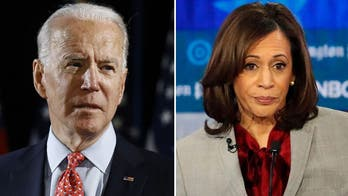 Carrie Severino calls out 'egregious' double standard from Kamala Harris, Democrats on Biden sexual assault allegation