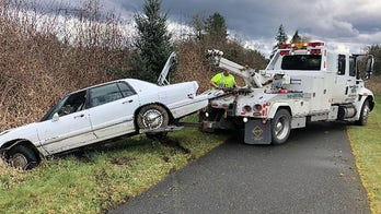 Washington man teaching his dog how to drive leads police on 100 mph chase, wrecks