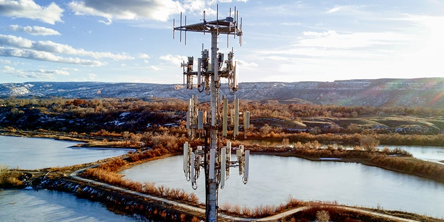 A cellular phone tower rises high above a neighborhood. (iStock)