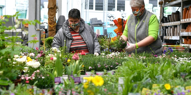 """People with protective masks look for flowers in a garden center in Saalfelden, the Austrian province of Salzburg, Tuesday, April 14, 2020. Smaller Austrian shops may reopen with special protective measures from Tuesday on. The Austrian government has moved to restrict freedom of movement for people, in an effort to slow the onset of the COVID-19 coronavirus.<br /> (AP Photo/Kerstin Joensson)""""></picture></div> <div class="""