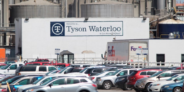 """""""Millions of animals –chickens, pigs and cattle –will be depopulated because of the closure of our processing facilities. The food supply chain is breaking,"""" wrote John H. Tyson, Tyson Foods' chairman of the board."""