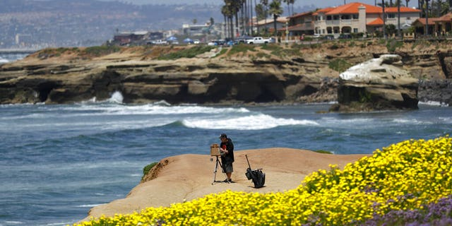 Brett Berndes paints at Sunset Cliffs Natural Park, after portions of the park opened Tuesday, April 21, 2020, in San Diego.l)