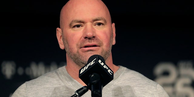 UFC was one of the first sports back in the spring. (AP Photo/Julio Cortez, File)