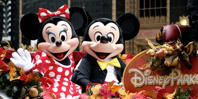 An off-brand Mickey and Minnie Mouse arrived for the first dance because the bride loved Disney, the commenter wrote.