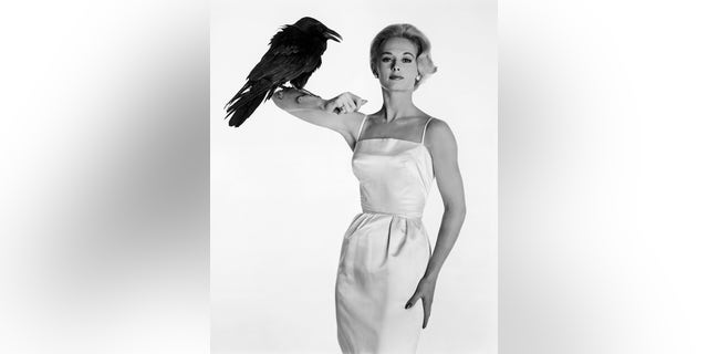 Tippi Hedren famously starred in Alfred Hitchcock's 'The Birds.'