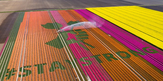 April 26, 2020: Nursery S. Schouten used?a field of tulips in Bant, Netherlands to display a message of hope.?