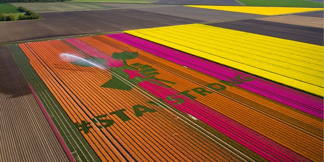 Tulip farmers in the Netherlands are writing optimistic messages into their famous flowers to remind visitors they'll always be welcome. ?