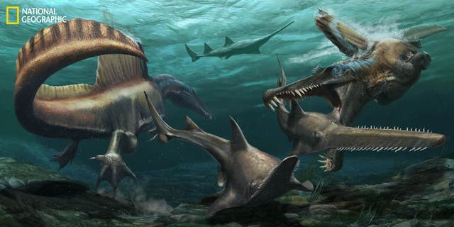 Two SpinosaurushuntOnchopristis, a prehistoric sawfish, in the waters of the Kem Kem river system in what is now Morocco. (JasonTreat, NG Staff, and Mesa Schumacher Art: Davide Bonadonna)