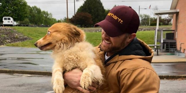 In this image taken Sunday, Bella, an Australian shepherd, is held by her owner Eric Johnson in Cookeville, Tenn. The dog was found Sunday after being missing for 54 days following a tornado that ravaged Putnam County and flattened the Johnson's family home in early March.
