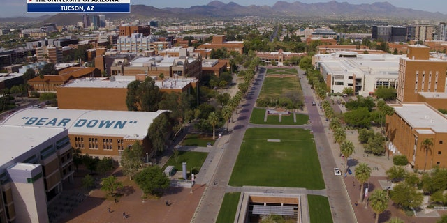 The University of Arizona has two medical schools. Robbins says they're continuously tracking COVID-19. They've created their own test kits and have been donating supplies to the community, including the Navajo Nation. (University of Arizona)