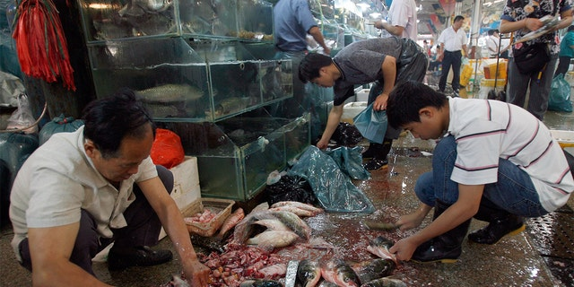 Chinese seafood vendors prepare fresh fish at a wet market in Beijing. (TEH ENG KOON/AFP via Getty Images)