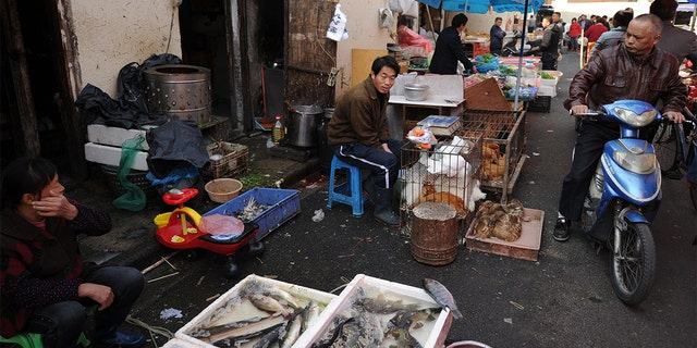 Vendors sell fish and poultry at an outdoor wet market in Shanghai's northern district of Zhabei. (PETER PARKS/AFP via Getty Images)