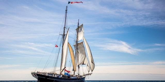 In this photo released by Wylde Swan on Friday April 10, 2020, the Wylde Swan tall ship sails at sea. (Arthur Smeets/Wylde Swan via AP)