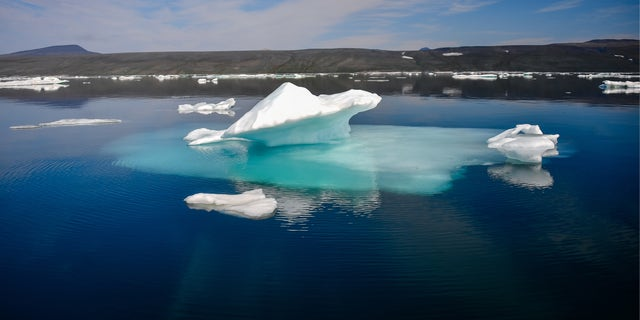 Phytoplankton enhance Arctic Ocean's ability to soak up carbon dioxide, study finds