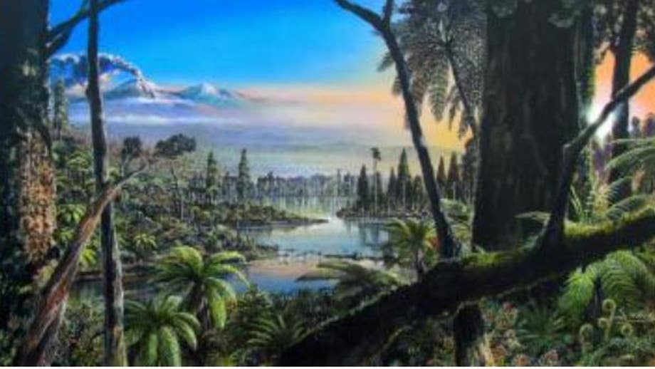 Evidence of ancient rainforest in Antarctica point to warmer prehistoric world