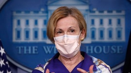 Dr. Birx asking CDC to investigate 3 coronavirus hotspots: LA, Chicago, DC