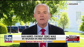 Peter Navarro: 'Chinese communist party' dismantled Trump's 'beautiful economy' in 60 days amid coronavirus