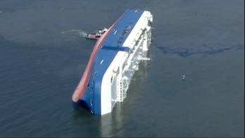 Removal of Golden Ray cargo ship capsized in Georgia sound hits snag due to coronavirus pandemic