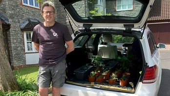Man converts parked Mercedes into greenhouse garden during lockdown