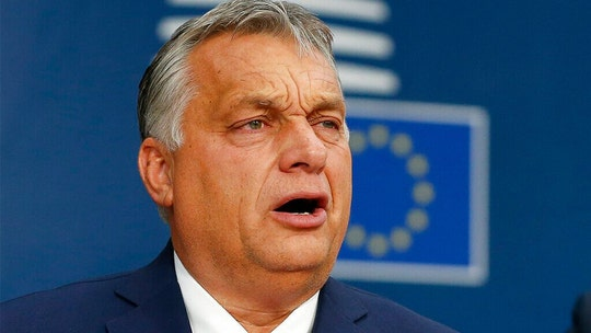 Twitter temporarily suspends Hungarian government account 'without warning or explanation,' cabinet official claims