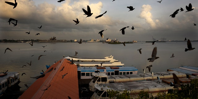 Pigeons fly at the Ernakulam boat jetty as state run boats start plying after lying idle for nearly two months due to the lockdown to curb the spread of coronavirus in Kochi, Kerala state, India, Wednesday, May 20, 2020. The resumption of once-routine aspects of daily life that were upended by the pandemic has picked up speed in recent weeks, as governments and communities try to strike a balance between keeping infections from flaring anew and allowing economies to function. (AP Photo/R S Iyer)