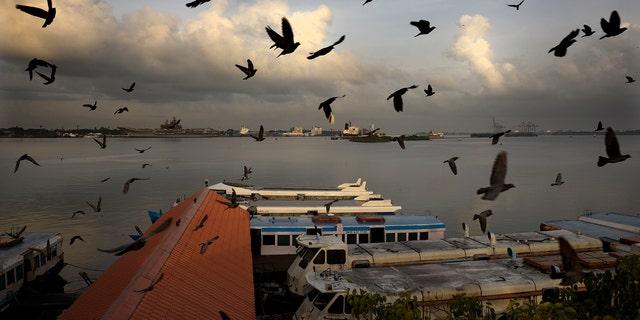 2020年5月20日,星期三,由于为遏制冠状病毒在印度喀拉拉邦高知市的扩散而进行的封锁,国营游船在闲置了近两个月后开始在埃纳库兰(Ernakulam)船码头飞行。由于政府和社区试图在防止感染再次爆发和允许经济运转之间取得平衡,最近几周流行病大肆侵扰了人们的日常生活。 (美联社照片/ R S Iyer)