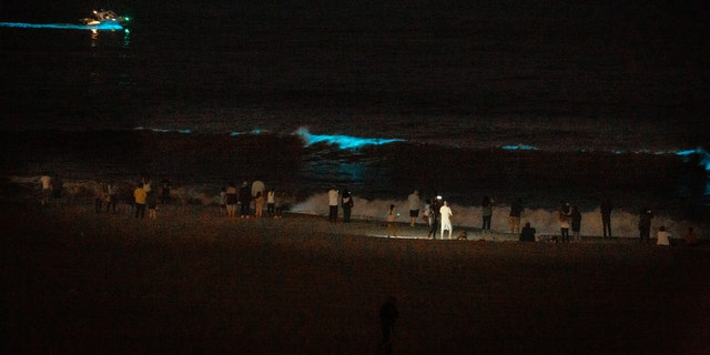 A strong Red tide sees Pacific Ocean waters turn a glowing bioluminescent Blue, as well as drawing the attention of curious Los Angelenos, despite Coronavirus stay-at-home orders and closed beaches, in Playa Del Rey, CA, USA, on May 7, 2020.(Photo by John Fredricks/NurPhoto via Getty Images)