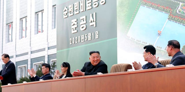 In this Friday, May 1, 2020, photo provided by the North Korean government, North Korean leader Kim Jong Un, center, claps with his sister Kim Yo Jong, third from left, during a ceremony at a fertilizer factory in Sunchon, South Pyongan province, near Pyongyang, North Korea.