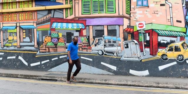 Singapore slammed for 'cruel' Zoom death sentence