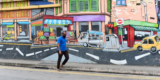 A man with a facemask walks past a wall mural in Singapore's Little India district on Saturday, May 16, 2020.  (AP Photo/YK Chan)