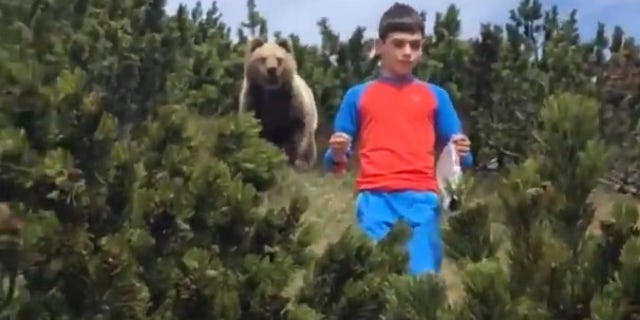 In May, an alarming encounter with a bear was recorded on video as a man guided a 12-year-old boy down a hillside with a bear looming behind the child. (Storyful/Louis Calliari)