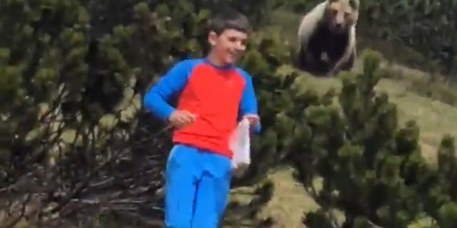 Boy Being Followed by Bear: 'This Is So Cool'