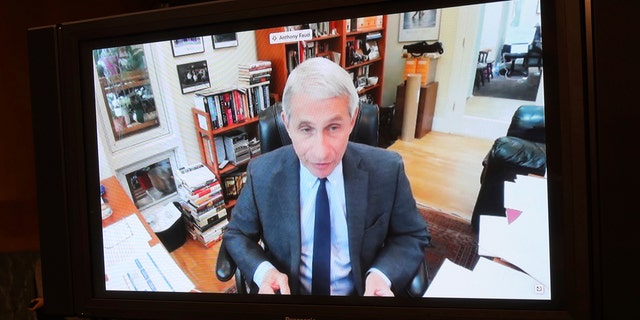 Dr. Anthony Fauci, director of the National Institute of Allergy and Infectious Diseases speaks remotely during a virtual Senate Committee for Health, Education, Labor, and Pensions hearing May 12 on Capitol Hill in Washington. (Win McNamee/Pool via AP)