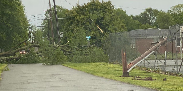 A powerful line of thunderstorms snapped trees and brought down power lines across Middle Tennessee on Sunday.