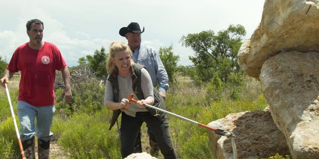 gardening Pellegrini, above, catches a rattlesnake in Sweetwater, Texas.