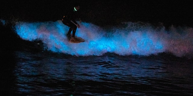A surfer rides on a bioluminescent wave at the San Clemente pier on April 30, 2020 in San Diego, California.