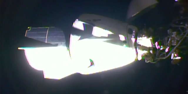 In this image taken from NASA TV video the SpaceX Dragon crew capsule with NASA astronauts Doug Hurley and Robert Behnken aboard docks with the International Space Station Sunday