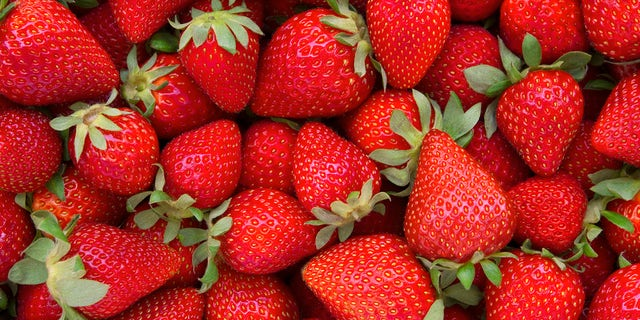 TikTok is losing it over buggy strawberries, but the common drosophila fruit fly doesn't pose a health hazard, the FDA says.