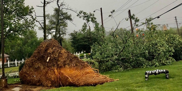 Damage was reported across Nashville after a derecho slammed the region on Sunday.
