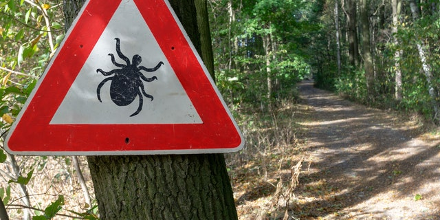 A sign warns hikers and passersby of ticks. (iStock)