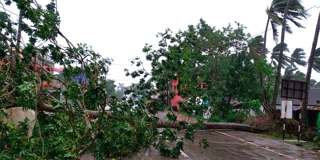 Trees lie uprooted on a highway from heavy winds ahead of Cyclone Amphan landfall, at Chandbali on the Bay of Bengal coast in Orissa, India, May 20, 2020.